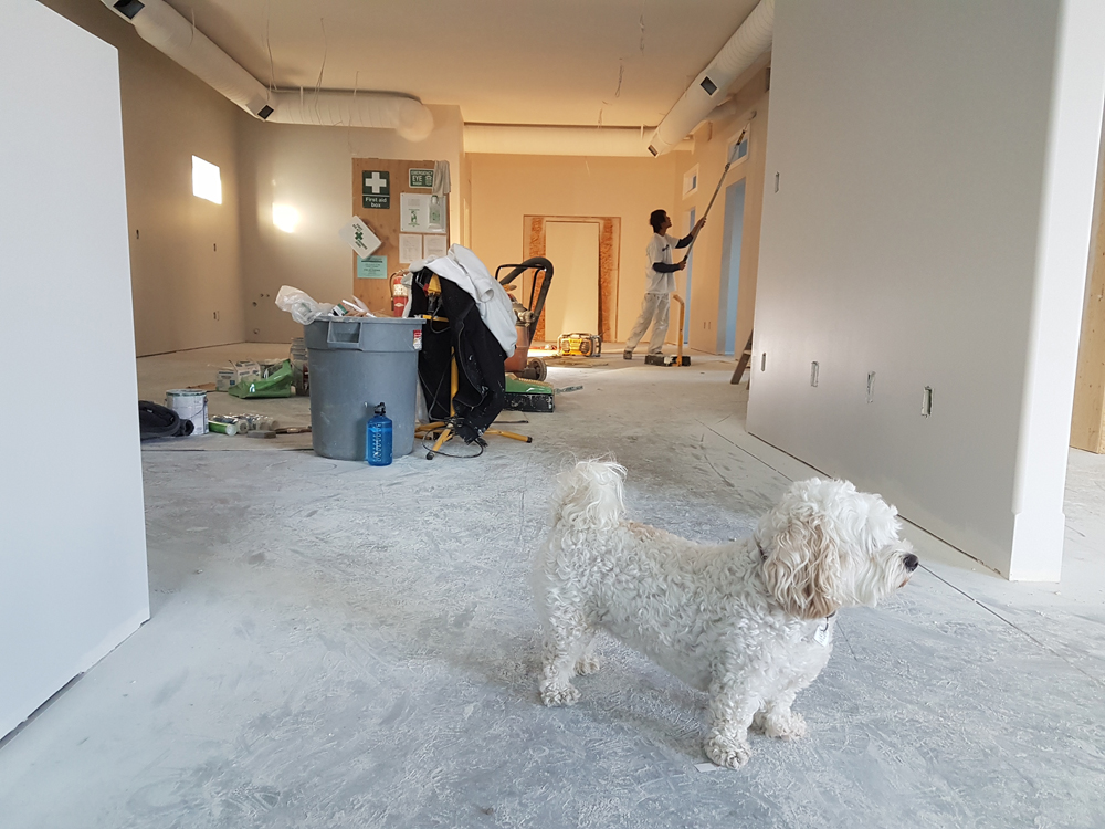 image showing a a room being renovated